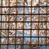 The Last Judgement in the Sistine Chapel, Michelangelo (Michelangelo Buonarroti)