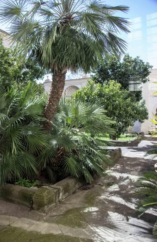 San Carlo alle Quattro Fontane, mały wirydarz klasztorny