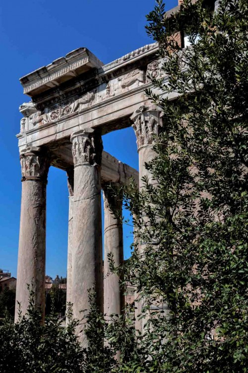 Columns of the portico of the temple of Faustina and Antoninus Pius, presently the Church of San Lorenzo in Miranda