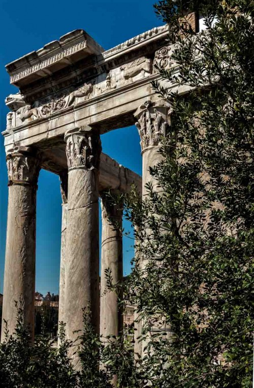Curch of San Lorenzo in Miranda, remains of the Temple of Antoninus Pius and Faustina