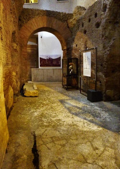 Posostałości stadionu Domicjana, Museo Stadio di Domiziano