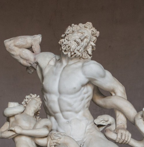 Grupa Laokoona, fragment, Musei Vaticani