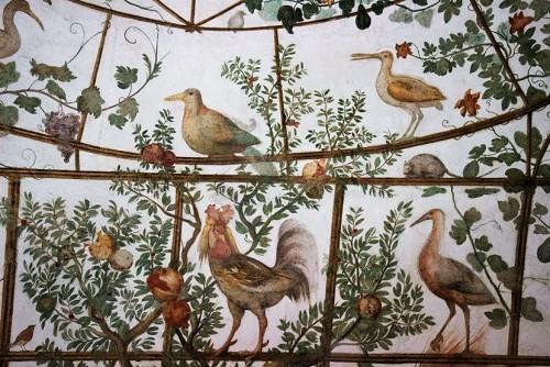 Willa Medici, pawilon Ptaków, dekoracje Jacopo Zucchiego