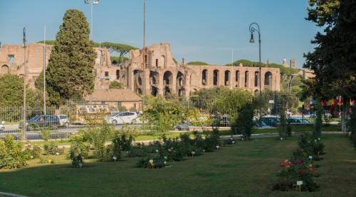Awentyn, Ogród Różany (Roseto di Roma Capitale), w tle ruiny Palatynu