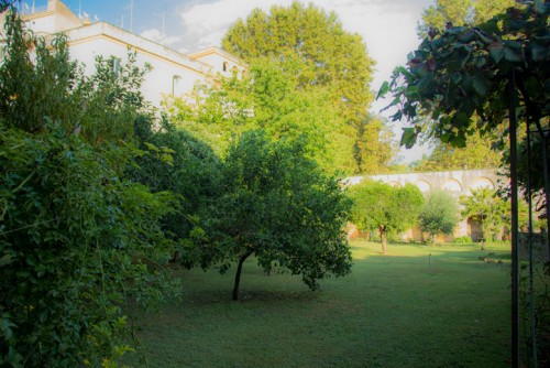The garden of the Francesca Romana Retirement Home