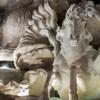 Fontana di Trevi, zaprzęg Okeanosa, Pietro Bracci